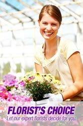 Florist Choice 1